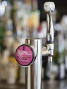 Drinks dispense services for Aspall Cyder